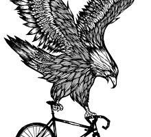 Eagle Ride Bicycle by toshibung