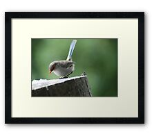 After the Rush Framed Print