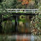 Old Cart Bridge,Seven Creeks, Euroa by Joe Mortelliti