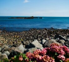 St Clement's Isle, Mousehole by Lissywitch