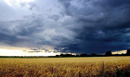 Thunderstorm in England by gfairbairn