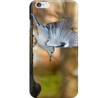 white breasted nuthatch 5 2011 iPhone Case/Skin