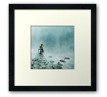 The Silver Swan Framed Print