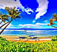 Paradise Found Kaanapali Beach  by DJ Florek