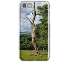Still Standing iPhone Case/Skin