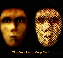 The Face in the Crop Circle by saleire