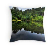 Quiet Little Pond Throw Pillow