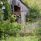 Old Barn by bobbic