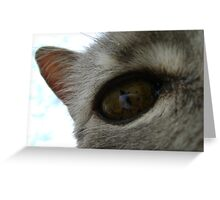 in a cat's eye Greeting Card