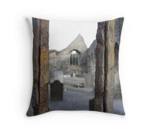 Through Rusted Bars Throw Pillow