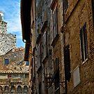 San Gimignano, Tuscany by Silvia Ganora