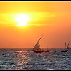 Zanzibar sunset by Shaun Whiteman