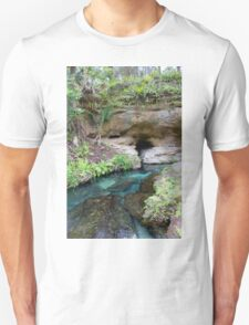 The Eye of the Spring  T-Shirt