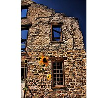 Planing Mill Photographic Print