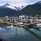 Skagway Alaska Harbor by gcampbell