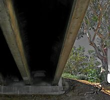 Under the bridge--Mission Bay San Diego by milton ginos