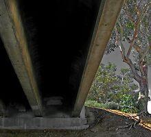 Under the bridge--Mission Bay San Diego by milton ginos
