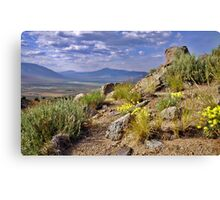 Palomino Valley Pre Sunset Canvas Print