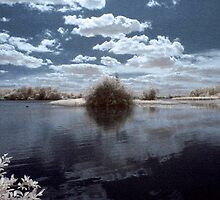 Lake in infrared (IR) by Pepperkayn