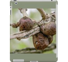 Wasp Gall: Old Enough to Leave Home iPad Case/Skin