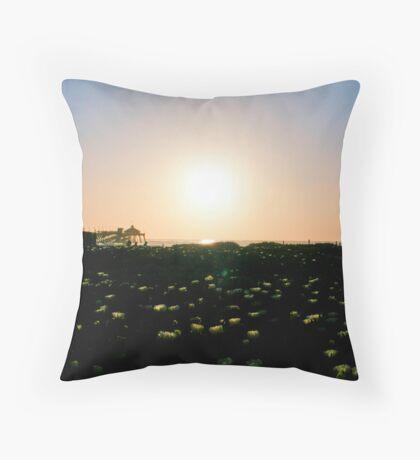 Last Bit of Sunlight Throw Pillow
