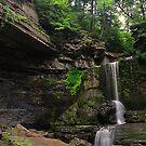 Filmore Glen State Park VI  by PJS15204