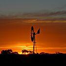 Windmill Sunset by GailD