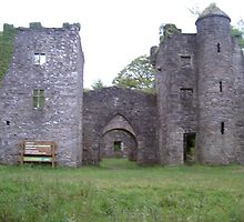 Careys Castle-Glenbarry Forest-Nr Clonmel-Co.Tipperary[View-Larger-Please] by Pat Duggan