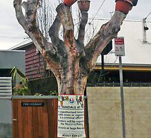 Tree Vandals at Work by Roz McQuillan