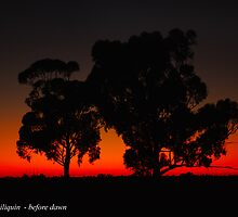 Deniliquin before dawn by wildplaces