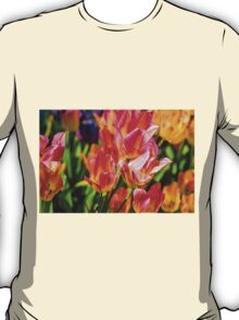Tulips Enchanting 41 T-Shirt