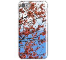 Red, White and Blue in Nature iPhone Case/Skin