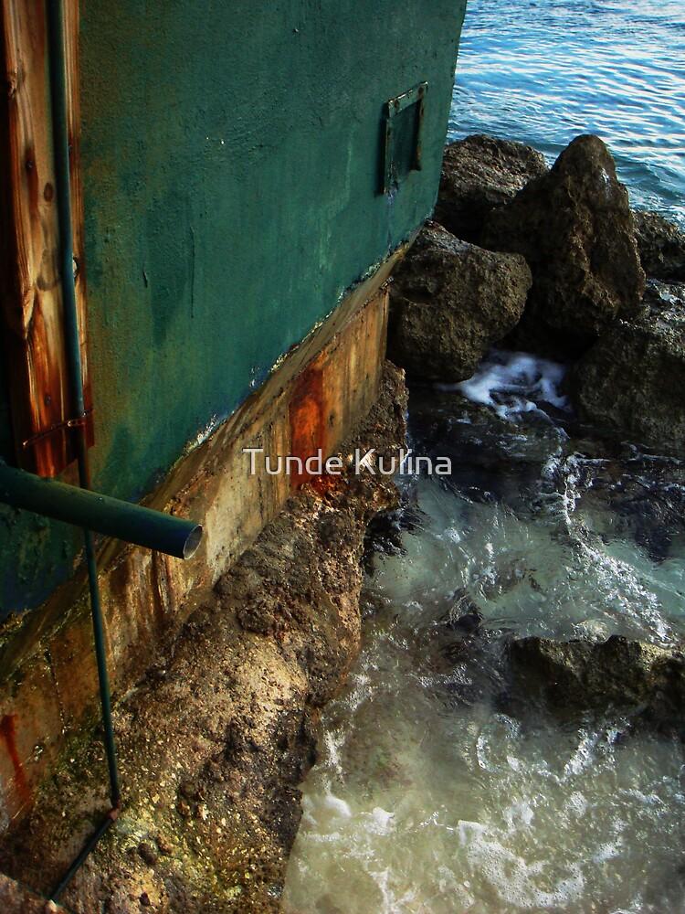 Bonaire by Tunde Kulina