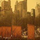 Central Park by Natasha M