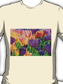Tulips Enchanting 46 T-Shirt