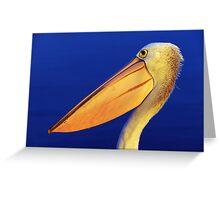""" Last evening light Pelican ""   Marlo Australia Greeting Card"