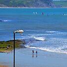 Lyme ,Dorset,UK 2015-05-16 by lynn carter