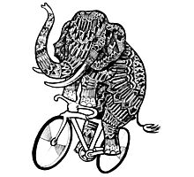 Elephant Aztec on a Bicycle  Photographic Print