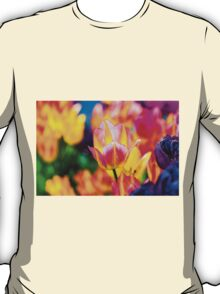 Tulips Enchanting 56 T-Shirt