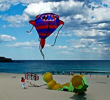 Kites by Carol Ritchie