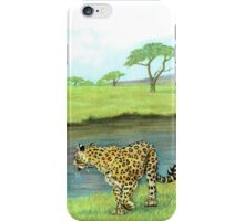 On Opposite Sides iPhone Case/Skin