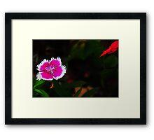 Hello..... Framed Print