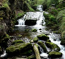 Watersmeet, Devon by 'ö-Dzin Tridral