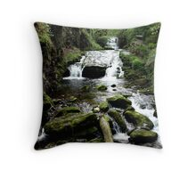 Watersmeet, Devon Throw Pillow