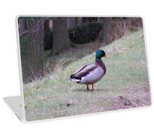 duck in woods Laptop Skin