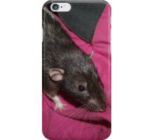 Hank the Dumbo rat iPhone Case/Skin