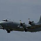 RAAF AP-3C Orion by Daniel McIntosh