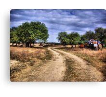 Country Road     ( BoneYard Series ) Canvas Print