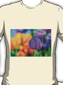 Tulips Enchanting 66 T-Shirt