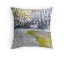 River Plym 1 Throw Pillow